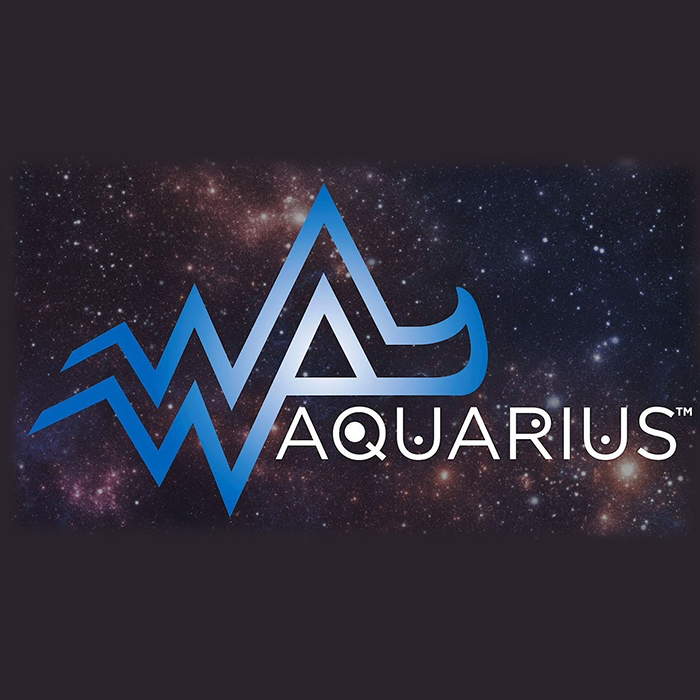 Zodiac Aquarius Water Based Ink