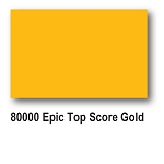 EPIC TOP SCORE GOLD